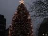 großer Weihnachtsbaum in der Mönckebergstraße