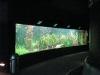 Aquarium in Hagenbeck's Tierpark