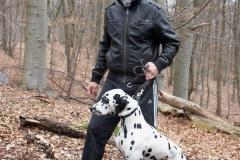 Hundewanderung  20.03.2011
