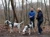 Detlev und Mirella mit ihren Dalmatinern Lord Leon und Monty