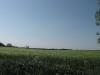 Na, wer sieht den Lindenberger Kirchturm? - Landweg zwischen Hasseldorf und Krusemarkshagen