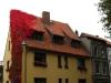 schönes Haus in Stralsund