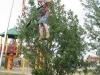 im  Tigerpark Dassow