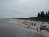 am Strand von Heringsdorf
