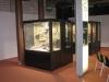 in der Ausstellung Terra Fauna auf Seebrücke Heringsdorf